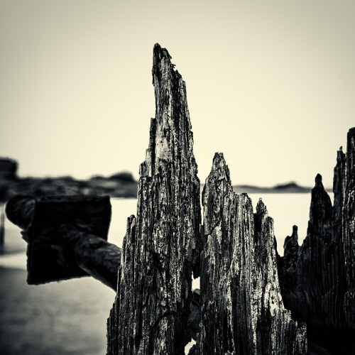 a photography of decay - the old pier